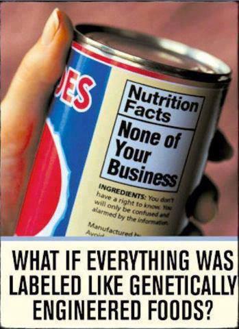 gen-foods-babels-biz